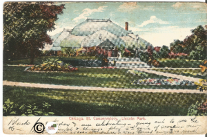 Over 100 Year Old Postcard, Chicago Illinois Conservatory in Lincoln Park 1906
