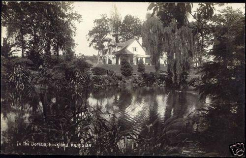 new zealand, AUCKLAND, In the Domain (1930s) RPPC