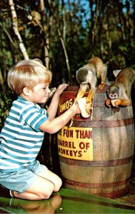 Florida Homosassa Springs More Fun Than A Barrel Of Monkeys