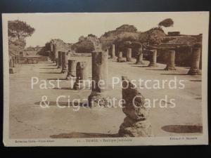 ALGERIA: Tipasa - Basilique Judiciaire, Old Postcard
