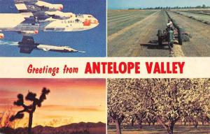 Antelope Valley California Air Force Farming Scenic View Postcard JD933995