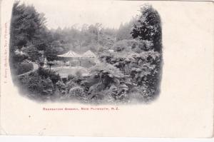 NEW PLYMOUTH, New Zealand, PU-1905; Recreation Ground
