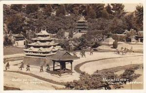 California Bernheimer Oriental Gardens Real Photo RPPC