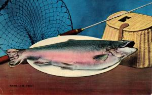 Fish - Maine Lake Trout