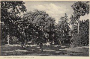 Dar es Salaam, Tanzania , 00-10s ; Botanical Gardens