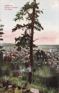 Washington Spokane Glimpse Of Spokane Through The Pines