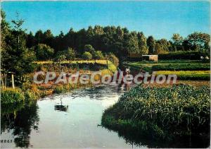 Modern Postcard Amiens (Somme) the Hortilionnages