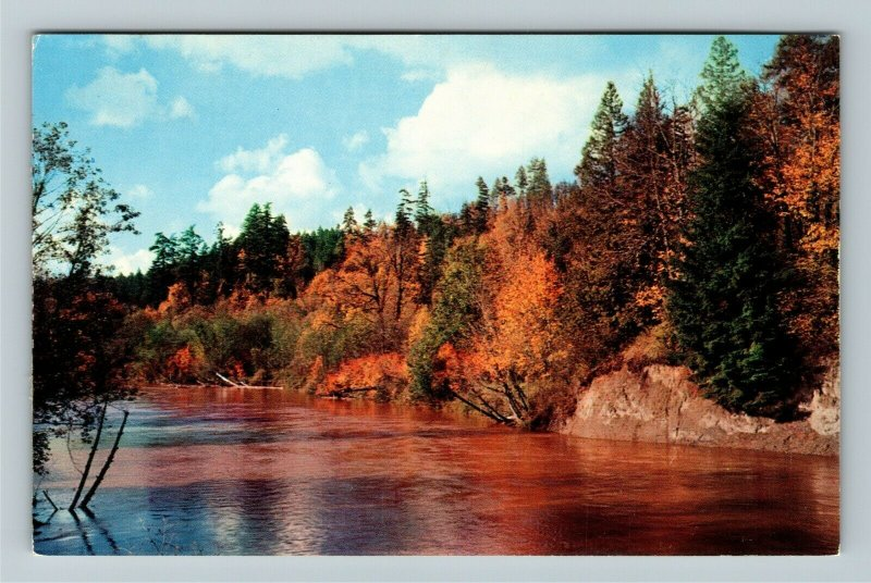 Saguenay Quebec-Canada, Havre St Pierre River with Autumnal View Chrome Postcard
