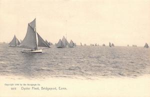 Bridgeport Connecticut~Sailboats Oyster Fleet~Rotograph Postcard #9375 UDB c1906