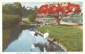 Japan, Korakuen Okayama unused Postcard