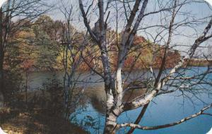 Autumn View at Durand Eastman Park - Rochester, New York