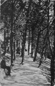 Folkestone The Zig Zag Promenade 1918