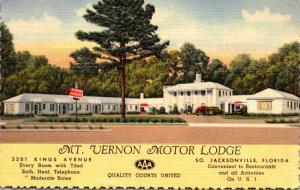 Florida Jacksonville The Mt Vernon Motor Lodge 1950 Curteich