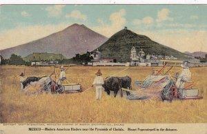 Mexico Modern American Binders Making Hay Near Pyramids Of Cholula sk4713