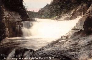 Letchworth Park New York Lower Falls Gorge Tinted Real Photo Postcard K94376