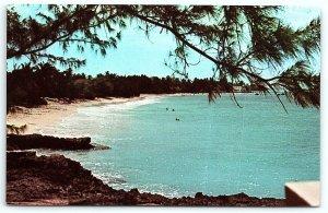 VTG Postcard Worthing Beach Barbados West Indies Sand Coast Tree Pine Water A4