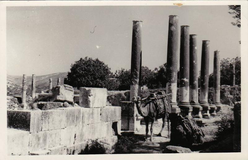 RP: Ruins of Sebastea , Sebastia, Nablus, West Bank, 20-40s