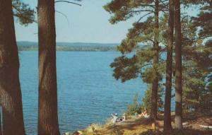 Fairy Lake Huntsville Picnic Watching Boat Boats USA Postcard