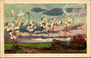 LANGUAGE OF FLOWERS - LILY - PEACE - POSTED - Art Vintage Postcard 1909 HICKORY