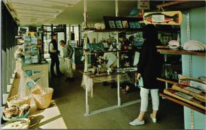 Gift Shop Undersea Gardens Victoria BC Oak Bay Marina Vintage Postcard D39
