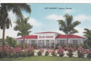 Florida Osprey Key Nursery 1965