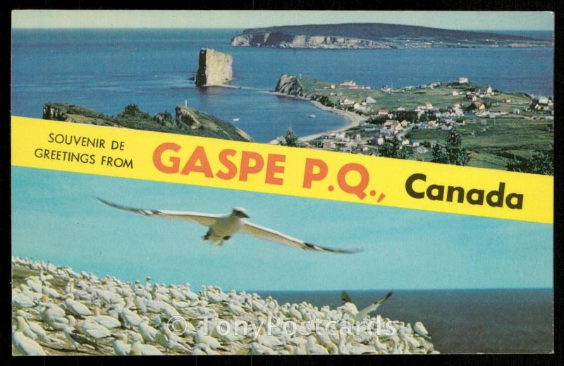 Greetings from Gaspe P.Q., Canada