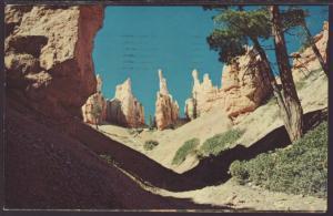 Bryce Point Trail,Bryce Canyon National Park Postcard BIN