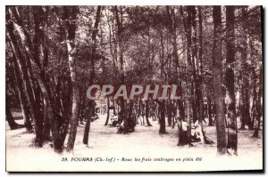 Old Postcard Fouras Under the cool shade in the summer
