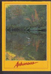Little Red River AR Postcard BIN