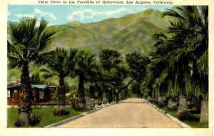 CA - Hollywood. Palm Drive