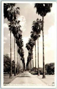 McAllen, Texas RPPC Postcard Palm Drive Road Palm Trees c1940s Unused