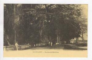 Boulevard Maritime, Conakry, Africa, 1900-1910s