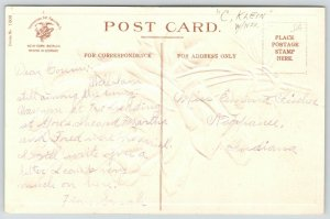 Catherine Klein New Year~Red & Pink Roses~Glossy Embossed Postcard~IAPC 1908