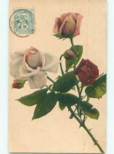 Very Old Foreign Postcard BEAUTIFUL FLOWERS SCENE AA4721