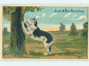 Pre-Linen KITTEN CAT SCRATCHING AGAINST THE TREE HJ4768