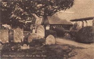 12803  England  Stoke Pages 1908   Church Parch & Yew Tree