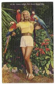 FL Miami Parrot Jungle Pin up Pretty Girl Vintage Advertisement Postcard