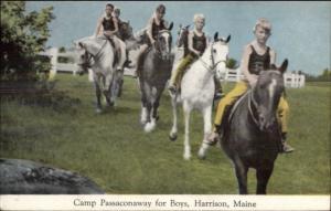 Harrison ME Camp Passaconaway For Boys Horse Riding Postcard