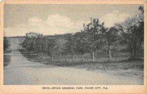 Haines City Florida Bryan Memorial Park Drive Vintage Postcard AA20324