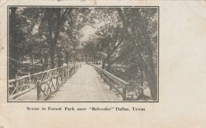 DALLAS , Texas, 1910 ; Forest park near BELVEDER