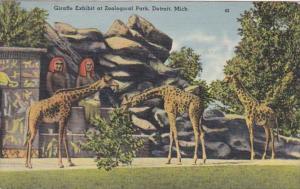 Michigan Detroit The Giraffe Exhibit In Zoological Park 1940