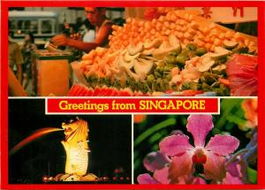 Greetings from Singapore exotic fruits seller multi views postcard