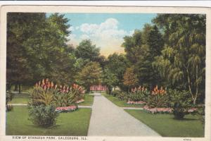 View Of Standish Park, GALESBURG, Illinois, 1910-1920s