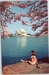 Jefferson Memorial -little girl sitting edge tidal basin looking up at Blossom