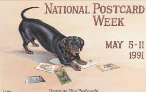 National Postcard Week, May 5-11, Doggone Nice Postcards, Dotson, Memory Lane...