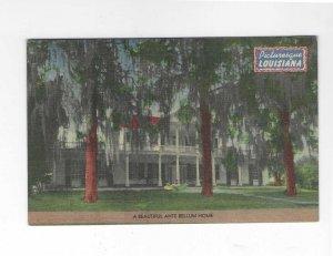 Vtg 40's Picturesque Louisiana Linen Postcard
