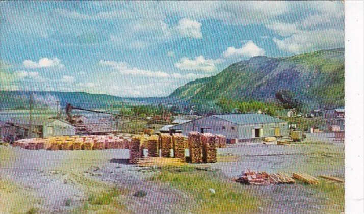 Washington Typical Small Sawmill