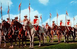 Barbados Bridgetown The Mounted Police