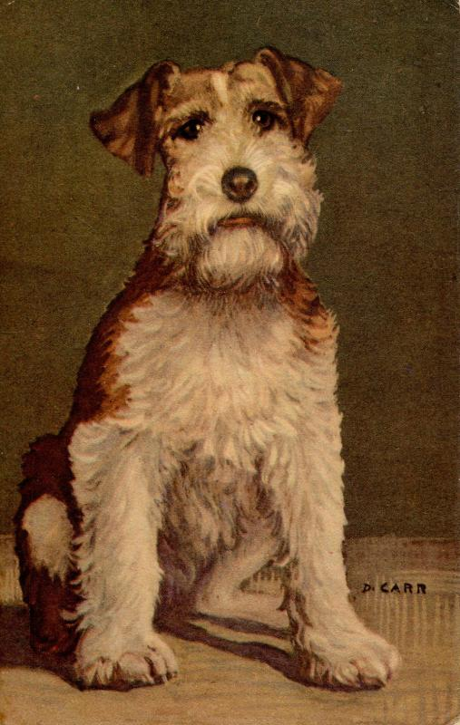 Dog - Wired-Haired Fox Terrier. Artist: D. Carr