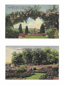 Hershey PA 2 Diff Linen Postcards Rose Garden Rebecca Statue and Tree Grove